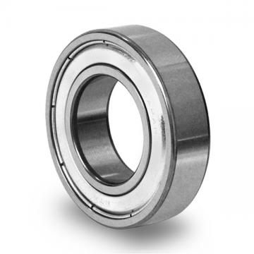 NSK NJ236ECM JAPAN Bearing 65×140×33