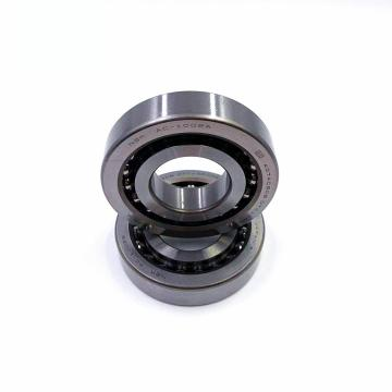 NSK NS300520ALC2-K6Z1(G=20) JAPAN Bearing 17*40*22