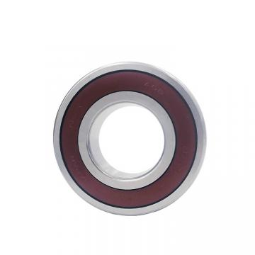 65 mm x 120 mm x 23 mm  NSK NJ213EM JAPAN Bearing 65*120*23